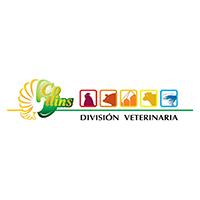 logo-collings